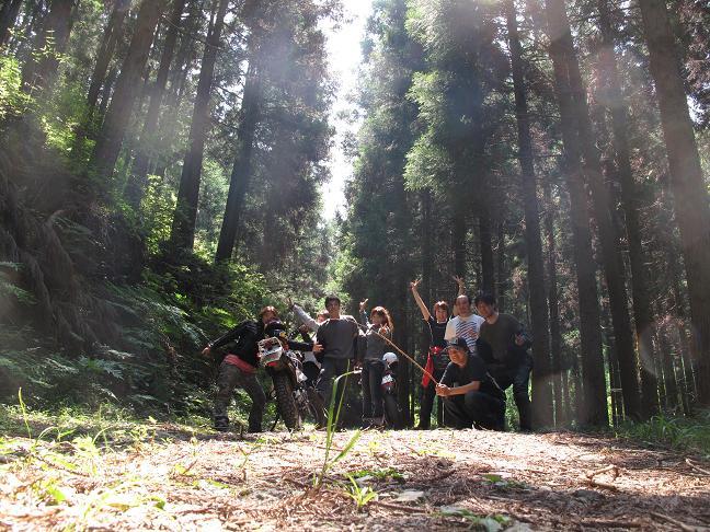 森のマイナリスト.JPG
