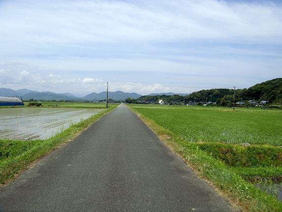 犀川.JPG